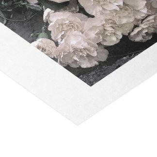 Papier Mousseline Roses blancs vintages d'aquarelle classés pour des