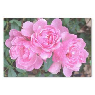 Papier Mousseline Roses pompon roses