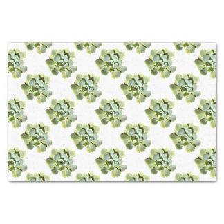 Papier Mousseline Succulent