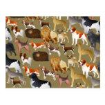 Papier peint de pure race de chien carte postale