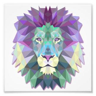 Papier professionnel de photo de Kodak de lion