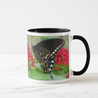 Papillon avec la tasse rouge de fleurs