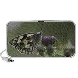 Papillon blanc marbré sur le chardon haut-parleur iPhone
