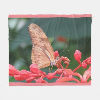 Papillon de corail rose
