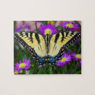 Papillon de machaon sur la marguerite puzzle