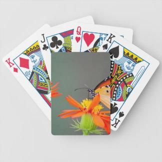 Papillon de monarque africain sur la fleur orange jeu de cartes