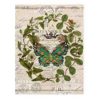 papillon de monarque botanique de pays français de cartes postales