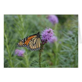 Papillon de monarque cartes