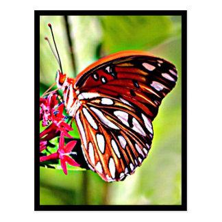 Papillon de monarque du Vermont Carte Postale