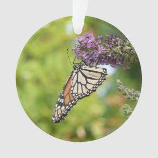Papillon de monarque sur le papillon Bush pourpre