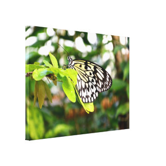posters cerf volant cerf volant affiches art cerf volant. Black Bedroom Furniture Sets. Home Design Ideas