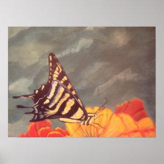 Papillon de queue d'hirondelle posters