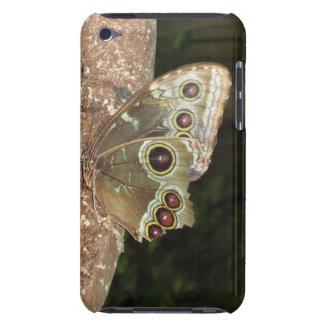papillon dur de cas de sheel de contact d'iPod Étuis Barely There iPod