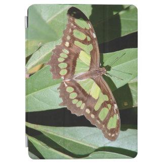 Papillon en Monteverde Costa Rica Protection iPad Air