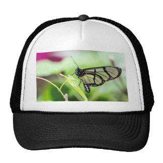 Papillon en verre d'aile casquettes de camionneur