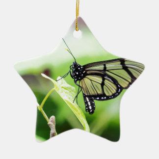 Papillon en verre d'aile ornement étoile en céramique