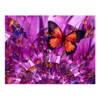 Papillon fou carte postale