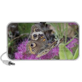 Papillon Haut-parleur Mp3
