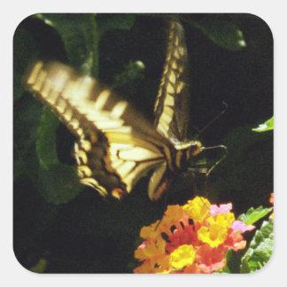Papillon jaune de queue en vol sticker carré