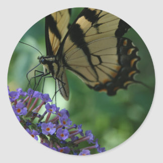 Papillon magnifique de machaon de tigre sticker rond
