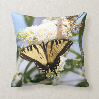 Papillon oriental de machaon de tigre coussin