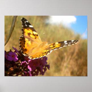 Papillon Posters