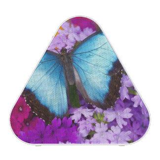 Papillon tropical 7 de Sammamish Washington Haut-parleur Bluetooth