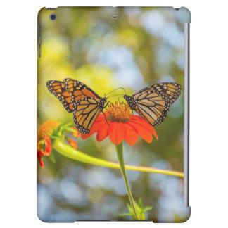 Papillons de monarque sur des fleurs sauvages
