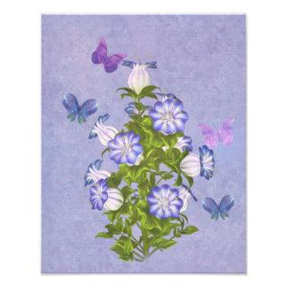 Papillons et fleurs de Bell Photographes