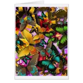 Papillons fous carte de vœux