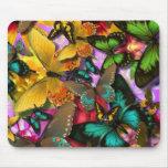 Papillons fous tapis de souris