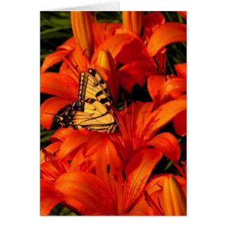 Papillons sur des lis tigrés carte de vœux
