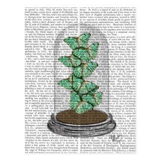 Papillons verts dans cloche en verre 2 carte postale