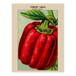 Paprika Rouge français vintage Piment Carte Postale