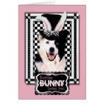 Pâques - un certain lapin vous aime - border colli cartes