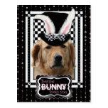 Pâques - un certain lapin vous aime - golden retri cartes postales