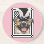 Pâques - un certain lapin vous aime - Pitbull Dessous De Verre
