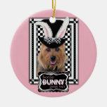 Pâques - un certain lapin vous aime - Terrier aust Décoration De Noël