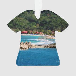 Paradis tranquille Labadee Haïti d'île