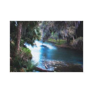 Paradis tropical de rivière de la Floride Toile