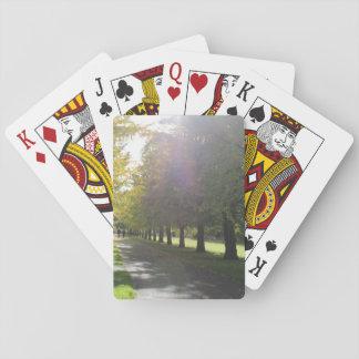 Parc de Bute - arbres d'automne Cartes À Jouer