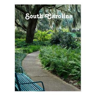Parc de la Caroline du Sud Carte Postale