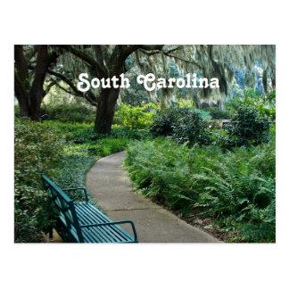 Parc de la Caroline du Sud Cartes Postales