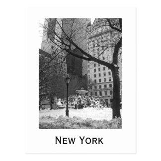 Parc de Milou à New York Cartes Postales