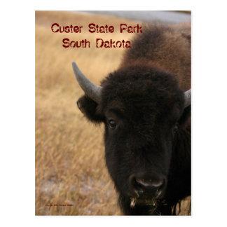 Parc d'état de Custer, carte postale du Dakota du
