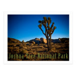 Parc national d'arbre de Joshua Carte Postale