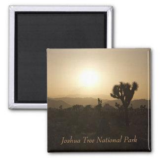 Parc national d'arbre de Joshua Magnet Carré