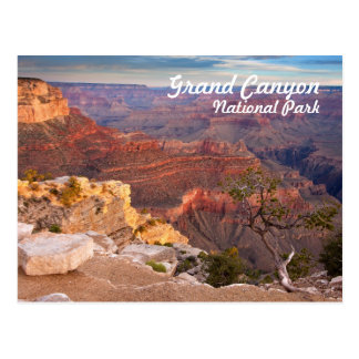 Parc national de canyon grand carte postale