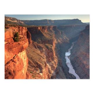 Parc national de canyon grand, Etats-Unis Carte Postale