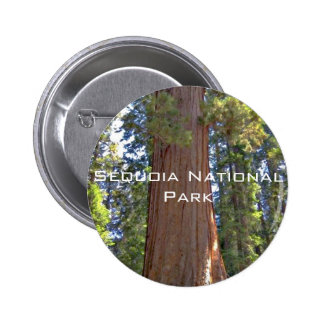 Parc national de séquoia badges